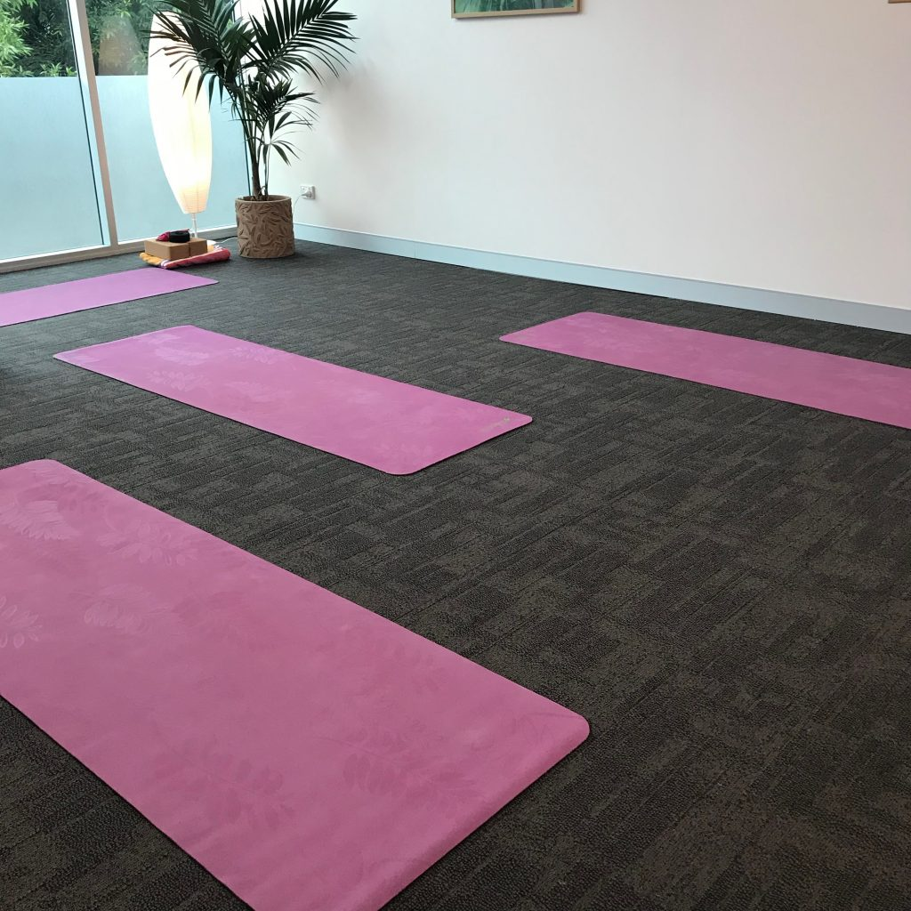 Yoga mats lined up in a row ready for a class