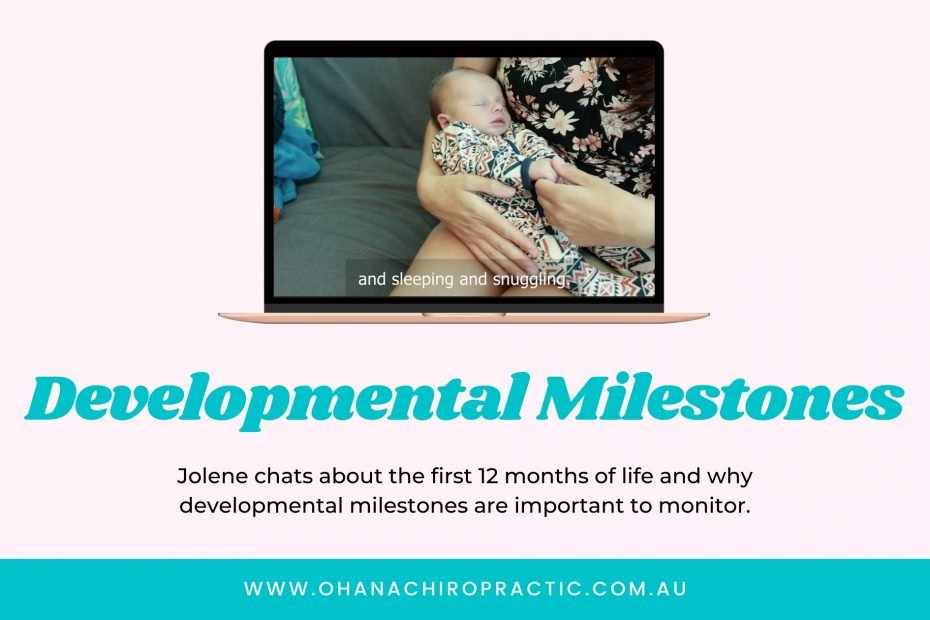 Image is of a laptop with an image of a small infant asleep in their mother's arms. Underneath laptop says the words Developmental Milestones.
